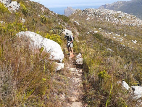 Trail maintenance by SANParks Honorary Rangers