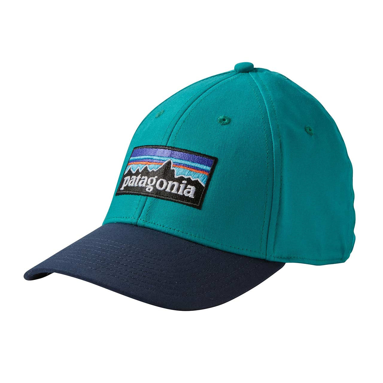 Patagonia_P-6 Logo Stretch Fit Hat_Black_L