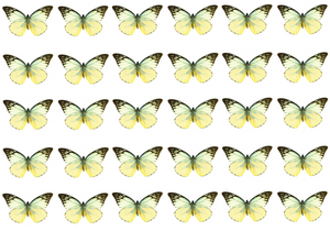 Mixed lemon yellow edible wafer butterflies