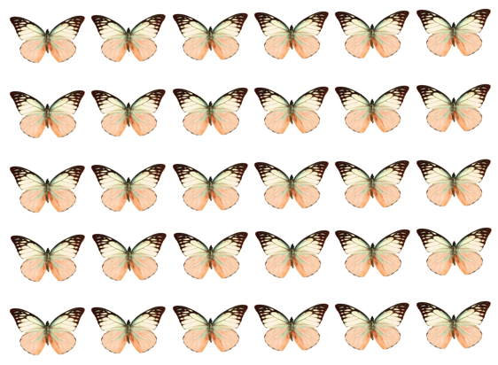 Mixed peach edible wafer butterflies
