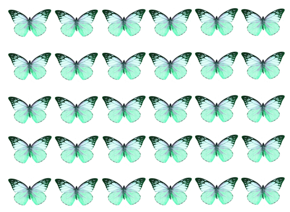 Mixed turquoise edible wafer butterflies