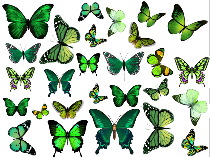 Green wafer butterflies, edible wafer for cakes, cake decorating