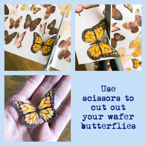 Orange & Green Edible Wafer Butterflies