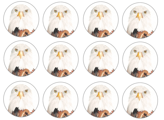 Eagle cupcake toppers