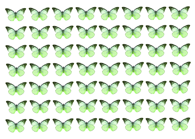 Green edible wafer butterflies for cake decorating
