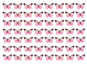 Pink edible wafer butterflies for cake decorating