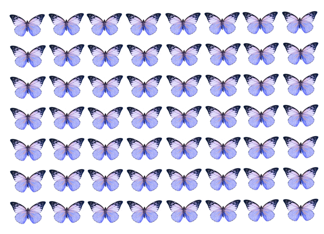 Lilac edible wafer butterflies for cake decorating