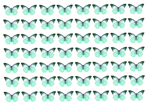 Aqua edible wafer butterflies for cake decorating