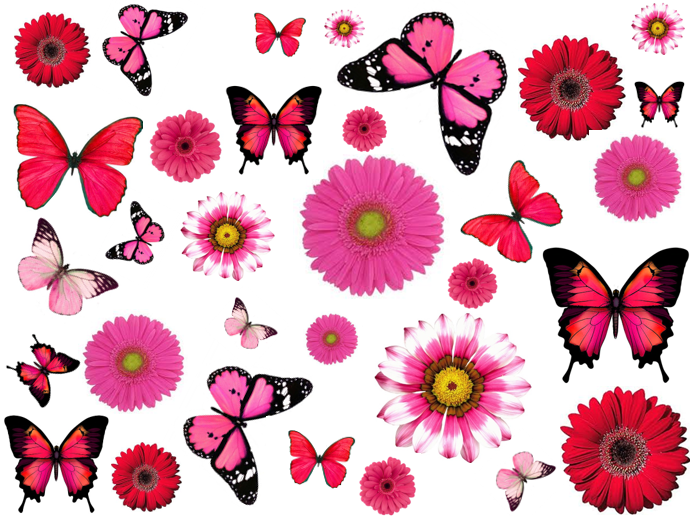 Pink Butterflies and flowers cupcake picks