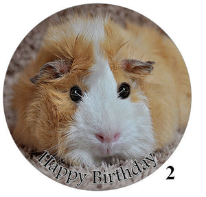 Edible cake toppers with guinea pigs for large cake