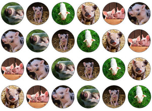 Piglet Cupcake Topper | Edible Pig Picture Cake Topper | Set of 24