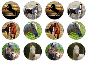 Edible Horse Cake Toppers | For Horse Lover | Edible Cupcake Topper | Set of 12