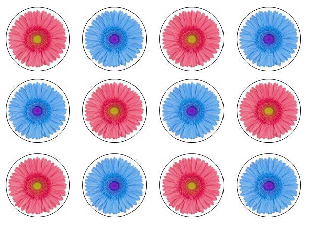Gerbera Edible Cupcake Toppers | Set of 12