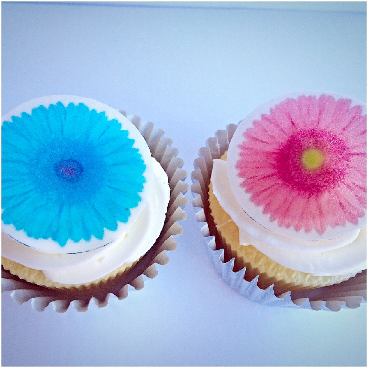 pink and blue flower cupcake toppers