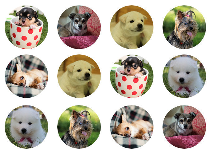 Dogs and Puppies Cake Toppers | Edible Dog Picture Cupcake Toppers