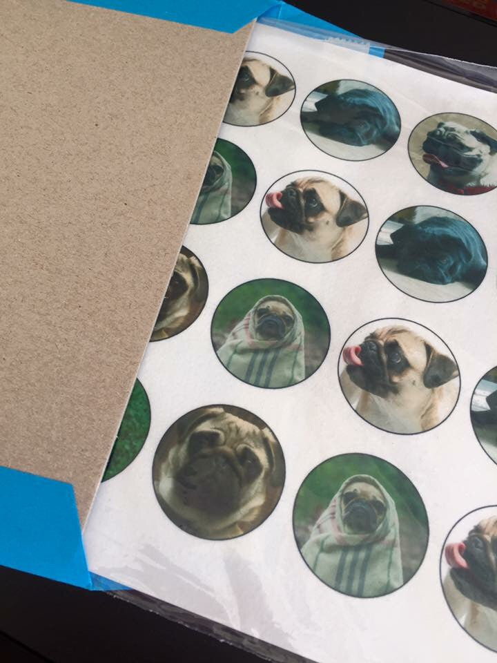 Pugs Cupcake Toppers