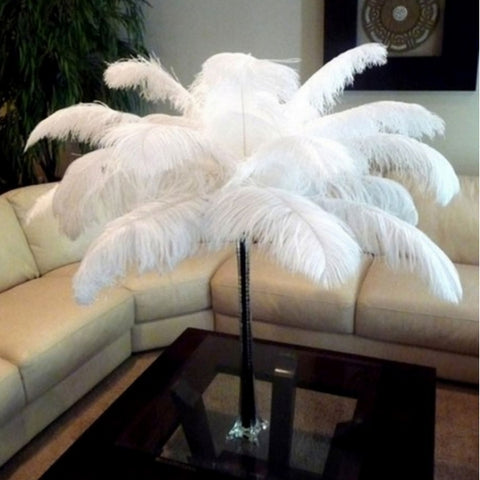 10pcs  7.9inch  White Natural Ostrich Feathers