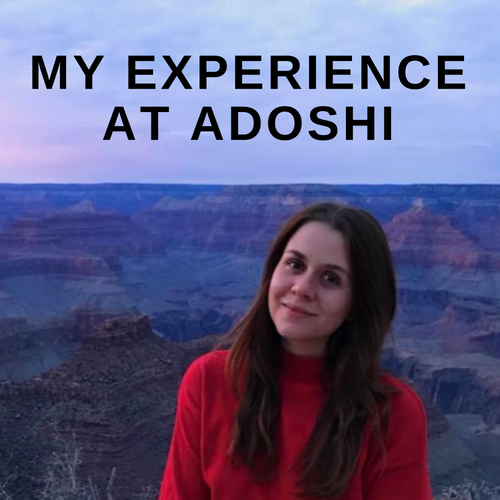 My experience at Adoshi; The thoughts of a former intern.