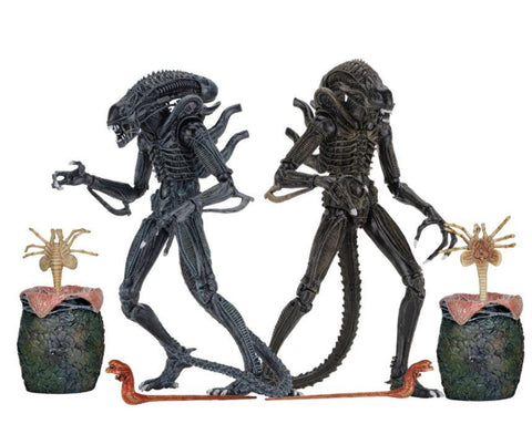 Aliens Ultimate Alien Warriors (1986) 30th Anniversary Brown and Blue Combo Alien Action Figure (Pre-order) - NECA