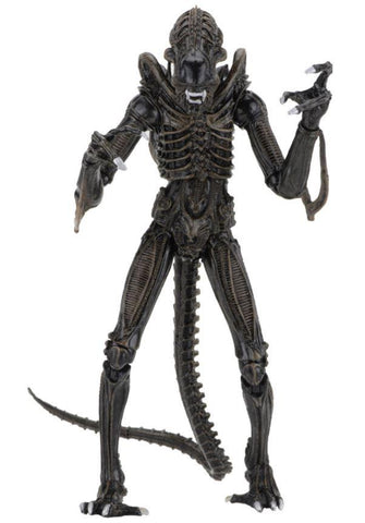 Aliens Ultimate Alien Warrior (1986) 30th Anniversary Brown Alien Action Figure (Pre-order) - NECA