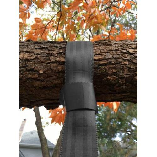 Calming Swing Straps for Tree or Beam