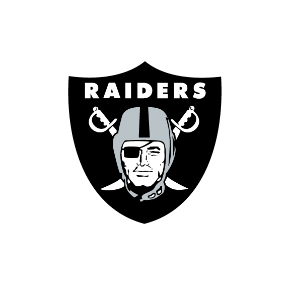 Oakland Raiders Pool Noodles (3-Pack)