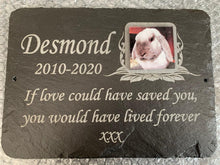 bunny grave memorial with photo