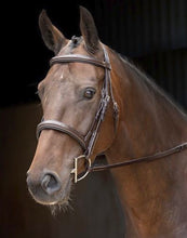 Rossano Florence Fancy Stitch Bridle