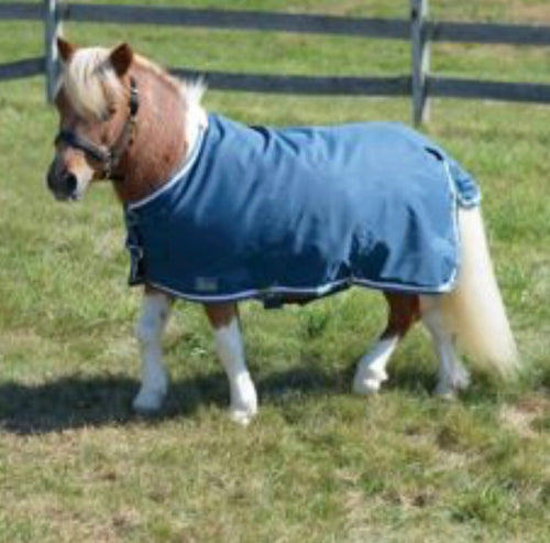 Mini Horse Shires Highlander Lite
