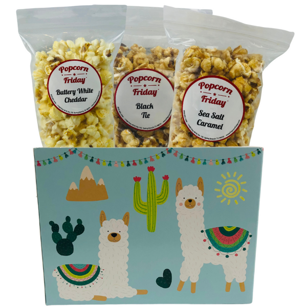 Popcorn Gift Basket Small-Party Llama