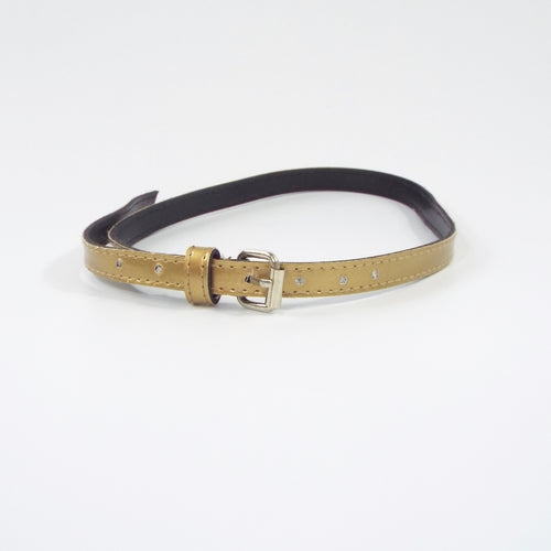 Metallic Gold Belt with Gold Buckle