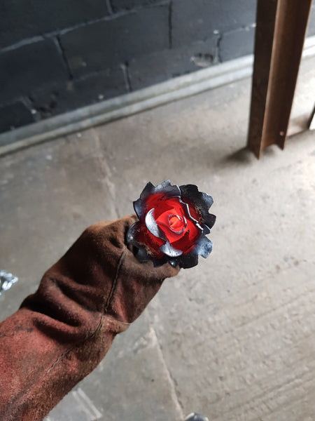 Steel Scratching Rose