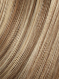 Color LIGHT-BERNSTEIN-MIX = Light Auburn, Light Honey Blonde, and Light Reddish Brown blend