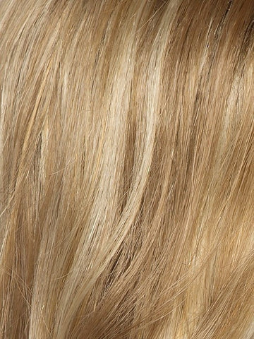 Color Caramel-Lighted = Dark Honey Blonde base with Gold Blonde highlights on the top only, darker nape