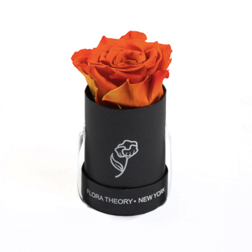 Preserved Roses Mini Black Box – Candy Red