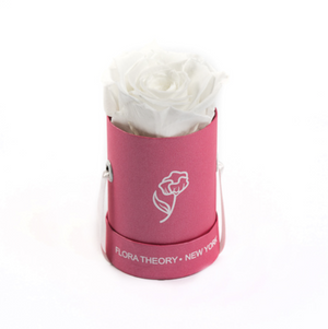 Preserved Roses Mini Pink Box – White-Flowers-DREEMS