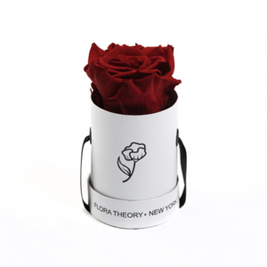 Preserved Roses Mini White Box – Red-Flowers-DREEMS