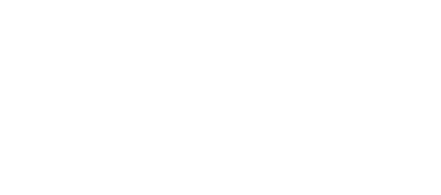 Division Noir Clothing