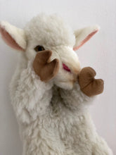 Hansa puppet sheep ...