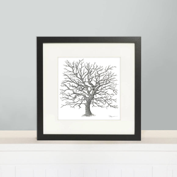 Original Tree Illustration Print - Maya