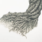Original Tree Print - Gnarled Willow