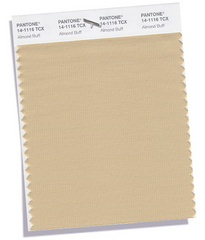 Almond Buff Pantone Colour