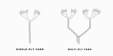 single-ply-yarn-and-multiple-ply-yarn