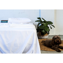 white-bed-sheet-with-plant-and-dog