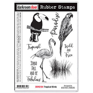 Darkroom Door Stamp set - Tropical Birds