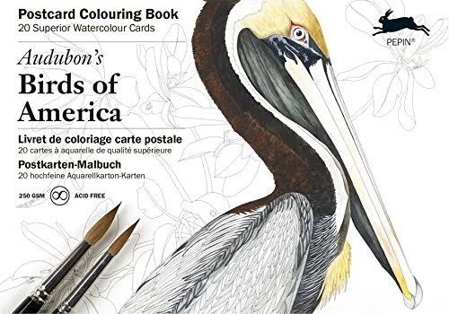 Pepin Watercolour Book - Birds of America