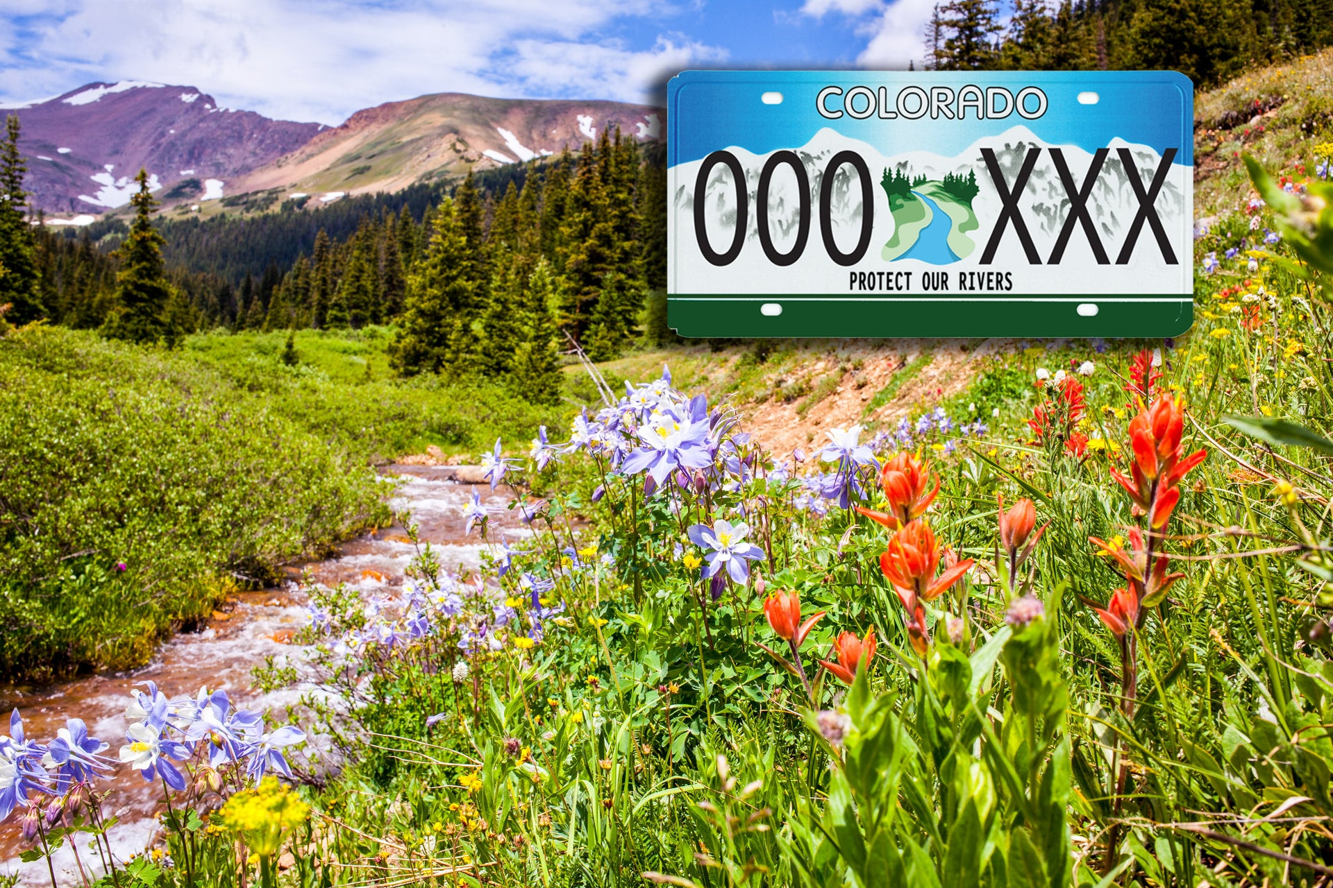 Protect Our Rivers License Plate from Colorado Trout Unlimited