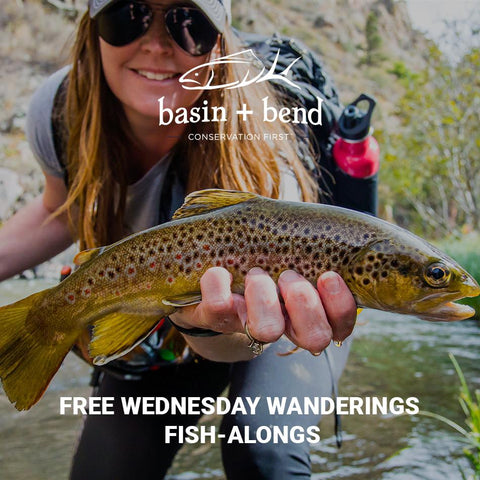 free wednesday wanderings fish-alongs evergreen colorado