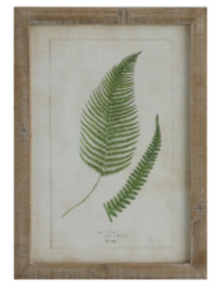 Fern & Fronds Framed Artwork