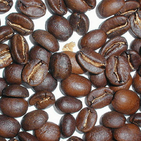 City Roast Organic Coffee Beans